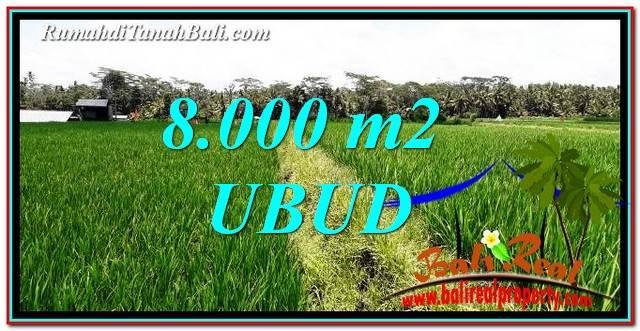 JUAL TANAH di UBUD BALI 8,000 m2 View Sawah
