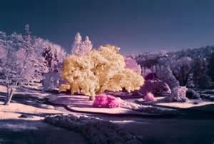 tanahoy.com infrared photography