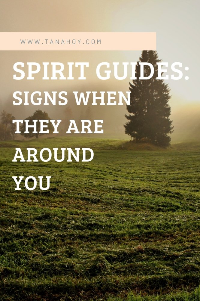 Sirit Guides – Signs When They Are Around You
