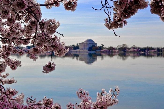 Psychic Washington DC