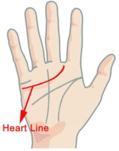 tanahoy.com heart_line