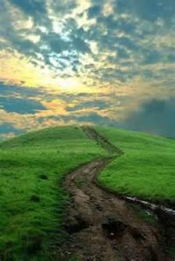 tanahoy.com life path
