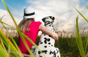 tanahoy.com psychic_healing_animals