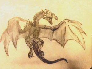 tanahoy.com dragon2