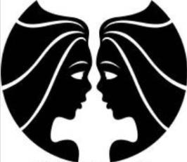 tanahoy.com twin_flame