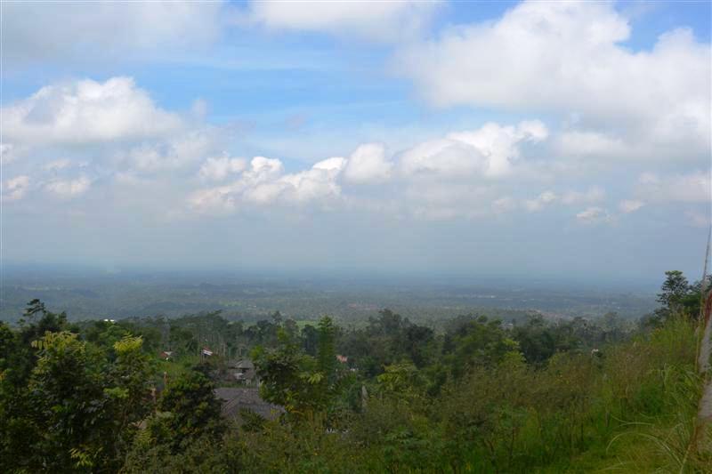 Jual tanah di Bali 65 Are di Tabanan Baturiti