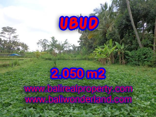 Jual tanah di Bali 20,5 Are di Ubud Pejeng