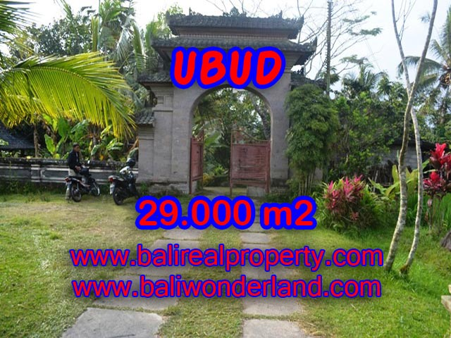 Tanah dijual di Bali 29.000 m2 View sungai, sawah dan tebing di Ubud Payangan