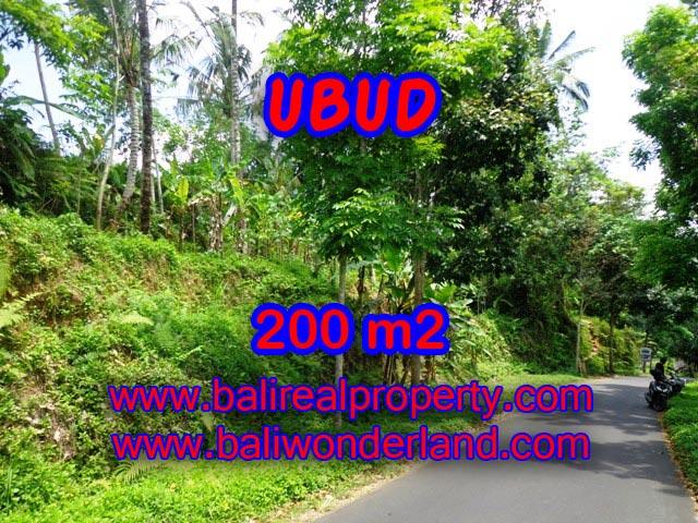 Tanah di Bali dijual 200 m2 di Ubud Tegalalang