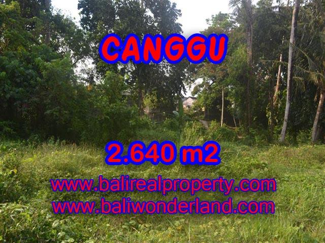 Tanah dijual di Canggu Bali 2,640 m2 di Brawa
