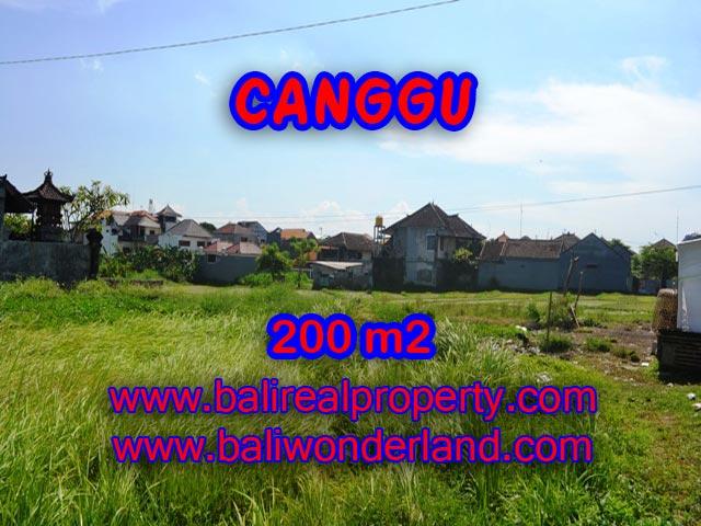 Tanah dijual di Canggu Bali 2 Are di Canggu Brawa
