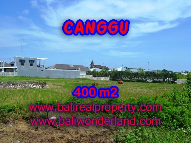 Jual tanah di Canggu 4 Are di Canggu Brawa Bali