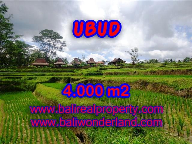 Jual tanah di Ubud 40 Are di Dekat sentral Ubud Bali