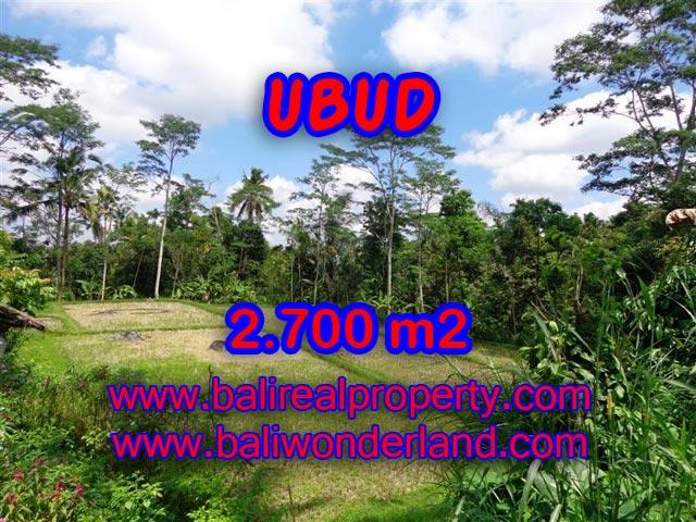 Jual tanah di Bali 2.700 m2 view sawah dan hutan di Ubud Tampak Siring