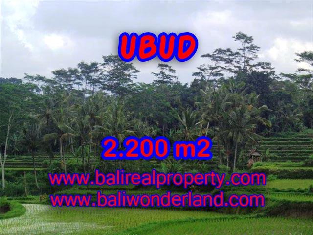 Tanah dijual di Bali 2.200 m2 view sawah dan gunung di Ubud Payangan