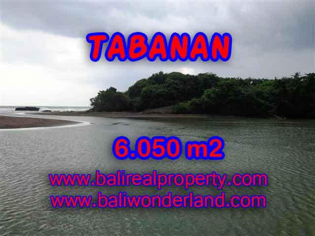 TANAH DI TABANAN MURAH DIJUAL TJTB098 - INVESTASI PROPERTY DI BALI