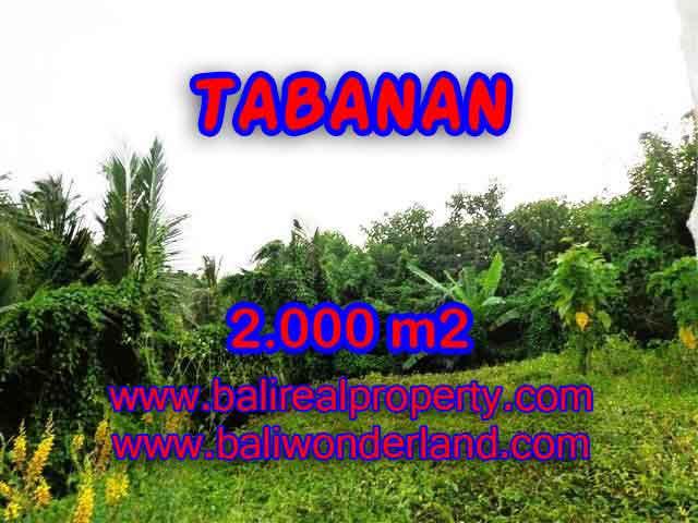 Jual Tanah murah di TABANAN TJTB099 - investasi property di Bali
