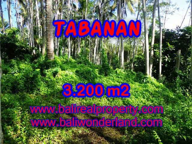 INVESTASI PROPERTI DI BALI - JUAL TANAH DI TABANAN CUMA RP 450.000 / M2