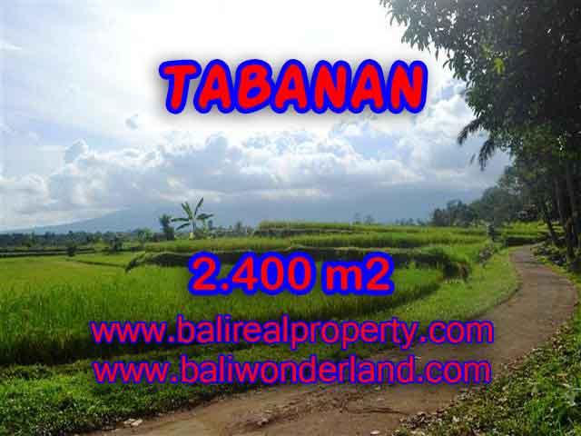 TANAH DIJUAL DI TABANAN BALI MURAH TJTB126 - PELUANG INVESTASI PROPERTY DI BALI