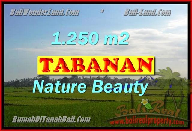 MURAH ! DIJUAL TANAH DI TABANAN TJTB148 - PELUANG INVESTASI PROPERTY DI BALI