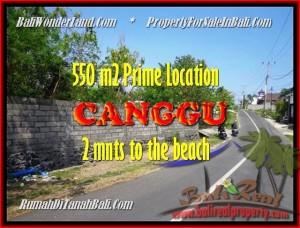 DIJUAL MURAH TANAH di CANGGU 5,5 Are di Canggu Batu Bolong