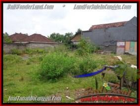 TANAH DIJUAL di CANGGU BALI 5 Are Lingkungan Villa