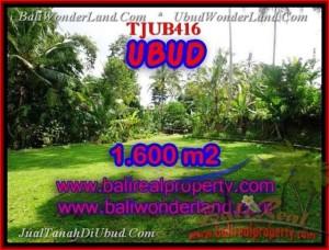 TANAH DIJUAL MURAH di UBUD BALI Untuk INVESTASI TJUB416