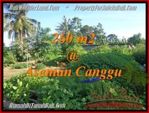 TANAH MURAH DIJUAL di CANGGU TJCG174