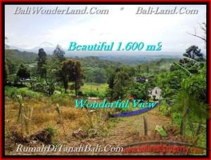 JUAL TANAH MURAH di TABANAN 16 Are view Gunung, sawah, hutan dan kota denpasar