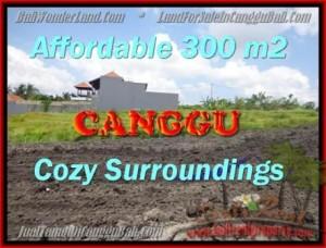 JUAL TANAH di CANGGU 300 m2  View Sawah, sungai,lingkungan villa