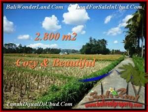 TANAH di UBUD DIJUAL 2,800 m2 di Ubud Pejeng