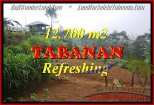 TANAH DIJUAL MURAH di TABANAN 12,700 m2 di Sukasada