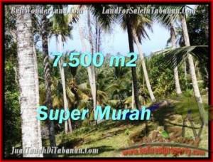 JUAL TANAH MURAH di TABANAN BALI 7,500 m2  View Kebun dan sungai