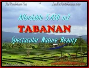 DIJUAL TANAH di TABANAN BALI Untuk INVESTASI TJTB152