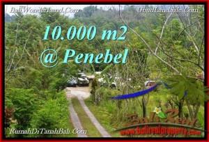 TANAH di  TABANAN BALI DIJUAL MURAH 10,000 m2  View Gunung, sawah jatiluwih