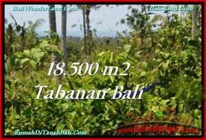 JUAL TANAH di TABANAN 18,500 m2 View Laut dan Kebun