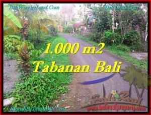 INVESTASI PROPERTY, JUAL TANAH MURAH di TABANAN BALI TJTB242