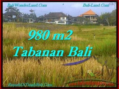 JUAL TANAH di TABANAN 9.8 Are View Sawah dan Laut