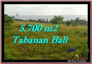 JUAL TANAH MURAH di TABANAN BALI 5,700 m2 di Tabanan Selemadeg