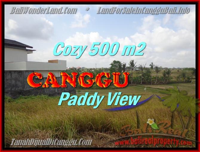 TANAH JUAL MURAH  CANGGU BALI 5 Are View sawah lingkungan villa