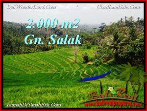 TANAH di TABANAN JUAL MURAH 2,000 m2  View Gunung, sawah, Kota Denpasar