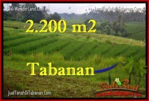 JUAL TANAH di TABANAN 2,200 m2  View Laut dan sawah