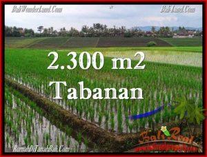 DIJUAL TANAH di TABANAN 24 Are di Tabanan Selemadeg