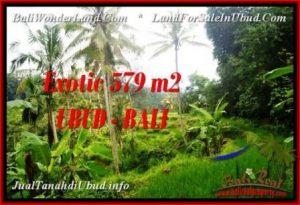 DIJUAL TANAH di UBUD Untuk INVESTASI TJUB538