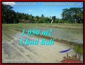 TANAH di UBUD BALI DIJUAL MURAH 10.5 Are di Sentral Ubud