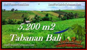 JUAL TANAH MURAH di TABANAN 5,200 m2  View sawah dan sungai