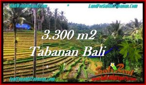 TANAH MURAH DIJUAL di TABANAN BALI 3,300 m2 di Tabanan Selemadeg