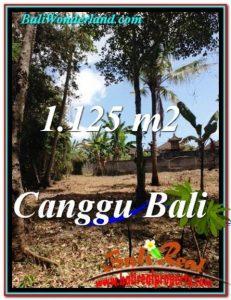 TANAH di CANGGU BALI DIJUAL 1,125 m2  View Sawah dan tebing sungai