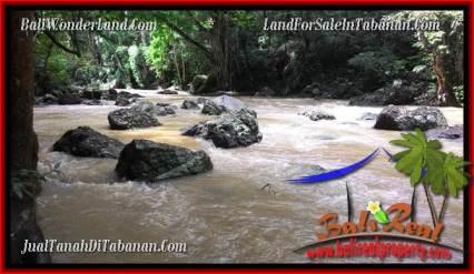 JUAL TANAH di TABANAN BALI 52 Are View sawah dan sungai