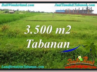 TANAH DIJUAL MURAH di TABANAN 3,500 m2 di Tabanan Kerambitan